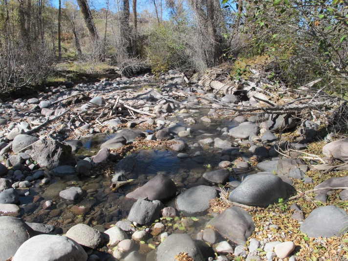 Little Cimarron reach downstream of the McKinley Ditch intake structure