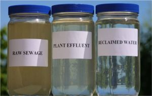 reclaimed_water_jars